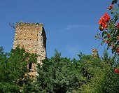 The ruins of the medieval fortress of Rocca de' Giorgi - Photo: courtesy of Arturo De Filippi