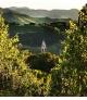 Slide 2 Home Cantina Azienda Agricola Anteo Oltrepo Pavese Vino Spumante Vini Spumanti Bollicine Cantina Provincia Di Pavia Lombardia Thumb Gk Is 953